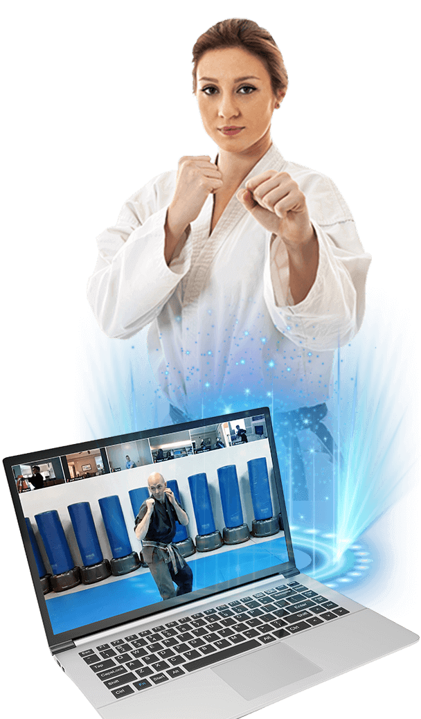 adult online martial science classes